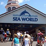BucketList + Go To Sea World = ✓