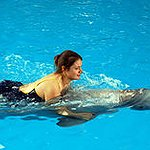 BucketList + Go Swim With Dolphins = ✓