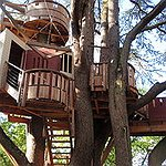 BucketList + Build A Tree House... An ... = ✓