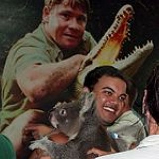 BucketList + Visit Australia Zoo, Meet The Erwin Family, And Tell Them What An Inspirational Figure Steve Was