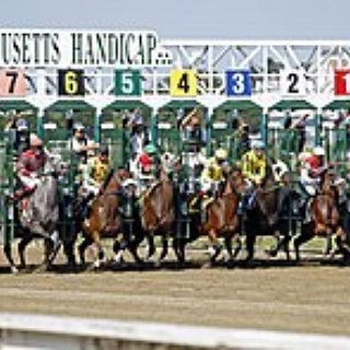 BucketList + Go To A Horse Race