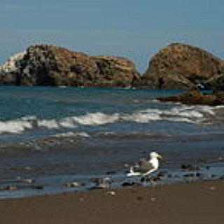 BucketList + Visit Channel Islands National Park