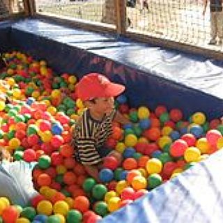 BucketList + Fill A Room With Ball Pit Balls