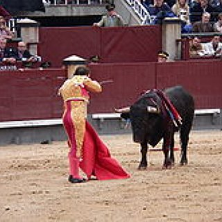 BucketList + See A Bull Fight