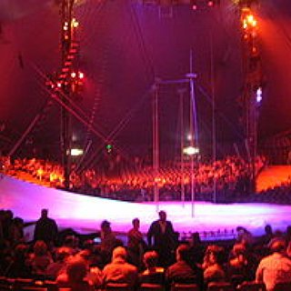 BucketList + Go To See At Least One Show Of Cirque De Soleil