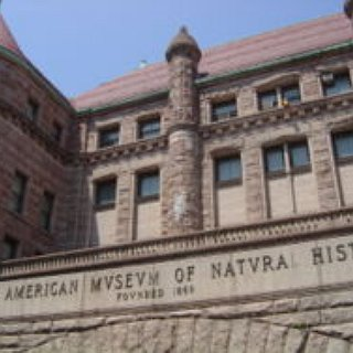 BucketList + Visit The Natural History Museum In New York.