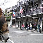 My life goal is... visit new orleans