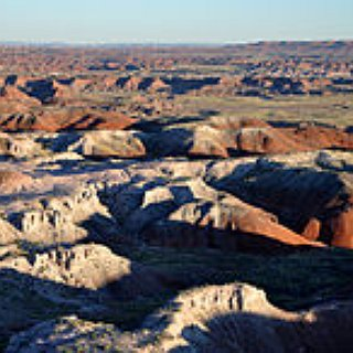 BucketList + Go To The Petrified Forest