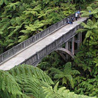 BucketList + Go To The End Of The Bridge To Nowhere In New Zealand
