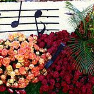 BucketList + Perform At Rose Parade