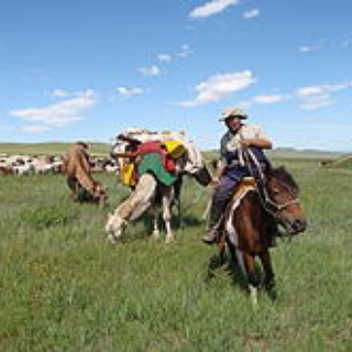 BucketList + Travel Mongolia - Stay In A Ger And Ride The Horses