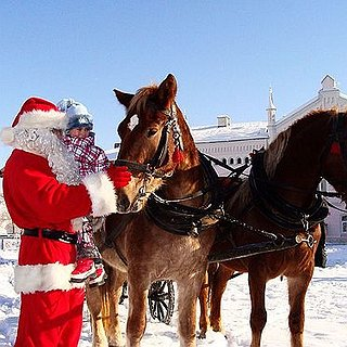 BucketList + Ride A Horse-Drawn Sleigh In The Snow