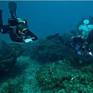 BucketList + Deep Sea Diving