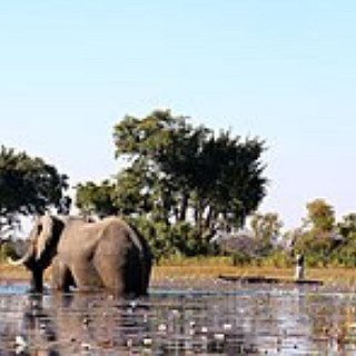 BucketList + Visit The Okavango Delta
