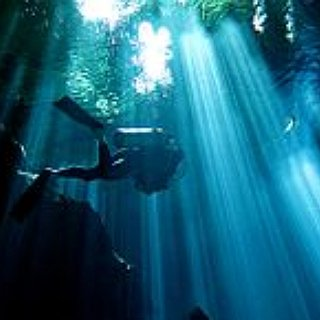 BucketList + Scuba Dive At Night