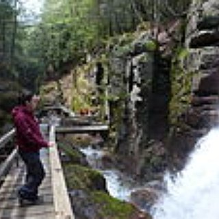 BucketList + Go To The White Mountain National Forest In Nh