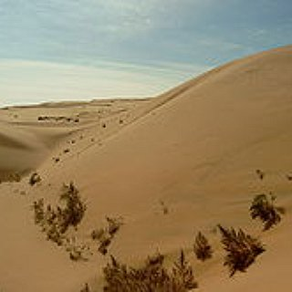 BucketList + Drive Across The Gobi Dessert
