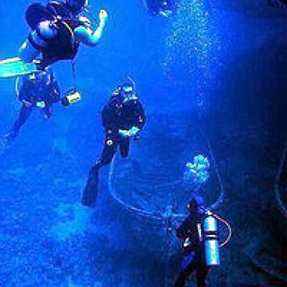BucketList + Obtain Scuba Certification