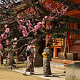 BucketList + Visit A Shinto Temple